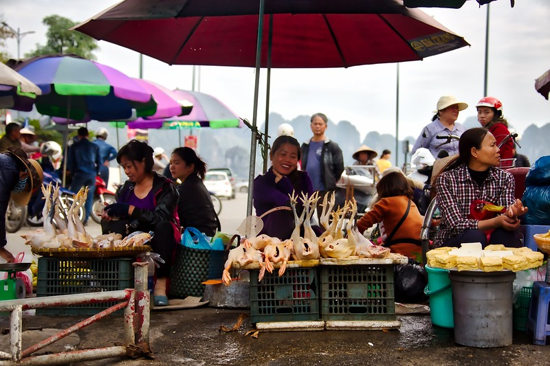 Chicken or the fish? Ha Long Cho Markets
