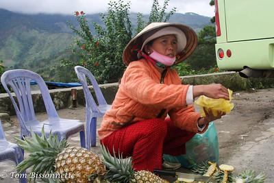 Pineapple  Lady