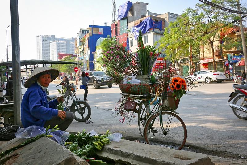 Hanoi - Flowers 007