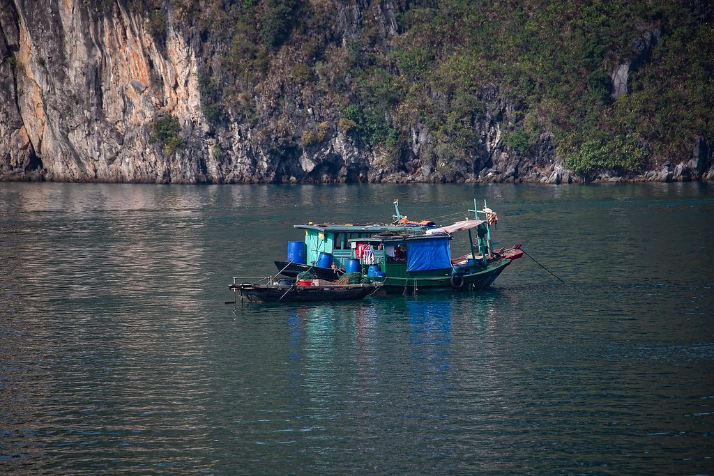 Halong Bay - Fishing Boats - 0010