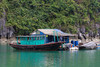 A small fishing camp among the limestone karsts and small islands in Ha Long Bay, Vietnam, Asia.