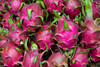 Closeup of dragon fruit at the outdoor fruit and vegetable market in Hoi An, Vietnam, Asia.