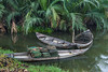 Old fishing boats in a jungle creek near Hoi An, Vietnam, Asia.