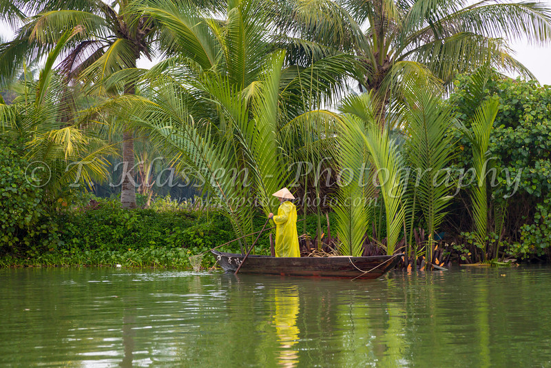 A Vietamese lady rowing a small boat through the marshes of the Thu Bon River near Hoi An, Vietnam, Asia.