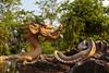 A dragon in the flower gardens on Ham Rong Mountain, Sapa, Vietnam, Asia.