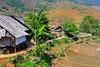 The village of Lao Chai near Sapa, Vietnam, Asia.