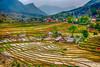 Terraced fields on the hillside and Lao Chai Village near Sapa, Vietnam, Asia.