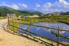 Ta Phin Village near Sapa, Vietnam, Asia.