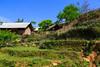 Ta Van village near Sapa, Vietnam, Asia.