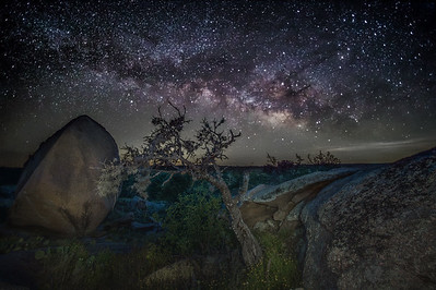 Enchanted Milky Way