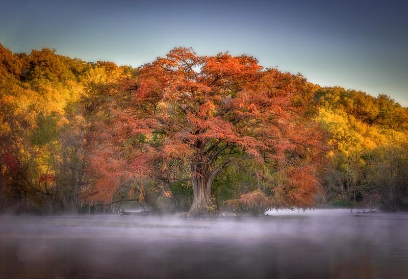 Autumn Myst