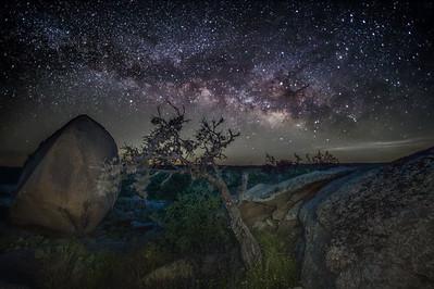 Enchanted Milky Way