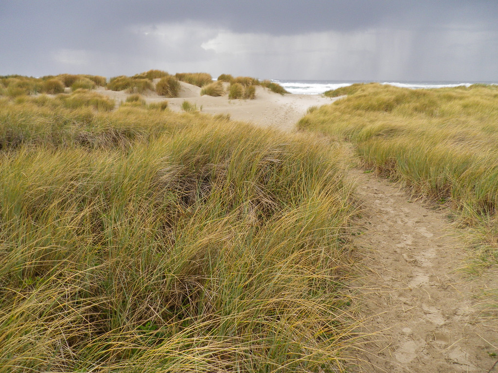A stormy Oregon coast.