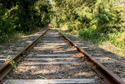 Abandoned RR Tracks