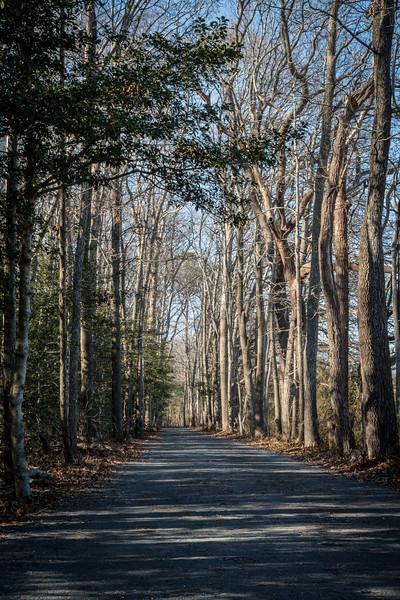 Junction & Breakwater Trail