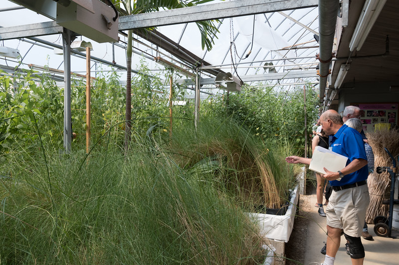 Halophile Greenhouse