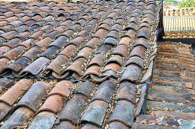 SanJose:  Tile Roof