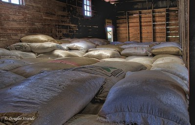 Tres Generations:  Coffee for export