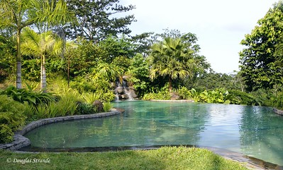 Sarapiqui: infinity swimming pool