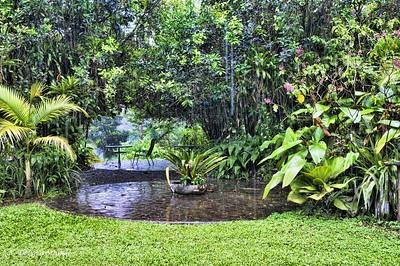 Sarapiqui: table in the rain