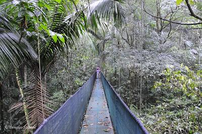 Sarapiqui: 260 meter suspension bridge