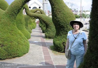 Zacero:  Church Topiary