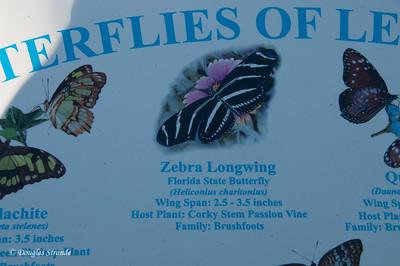 Butterfly chart