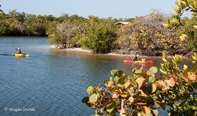 Kayakers at Lovers Key Park