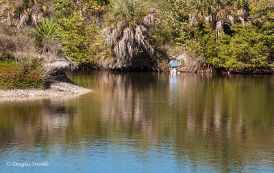 Fly fisherman at Lovers Key Park