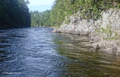 A calm section of the Kennebeck River
