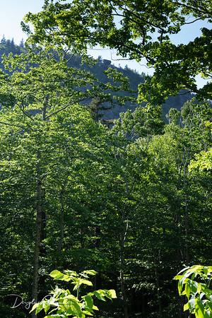 Bubble Rock seen from below near Jordan Pond