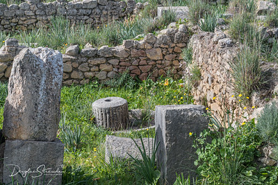 Millstone among ruins at Volubilis