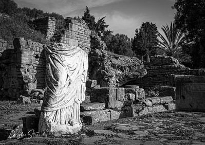 Roman ruins at Chellah