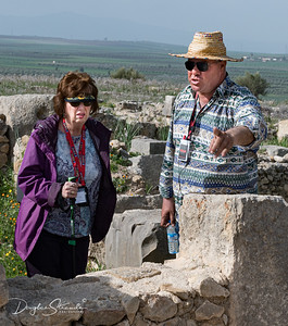 Volubilis guide explaining