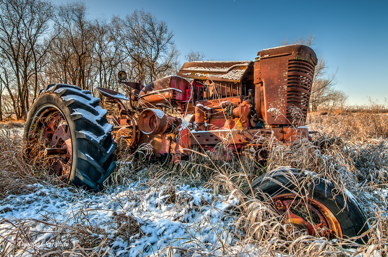 Farmall Tractor, out to pasture....