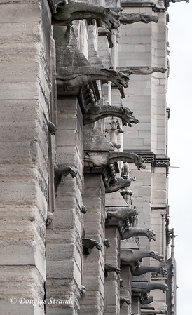 Gargoyles on the exterior of Notre Dame function a rain spouts