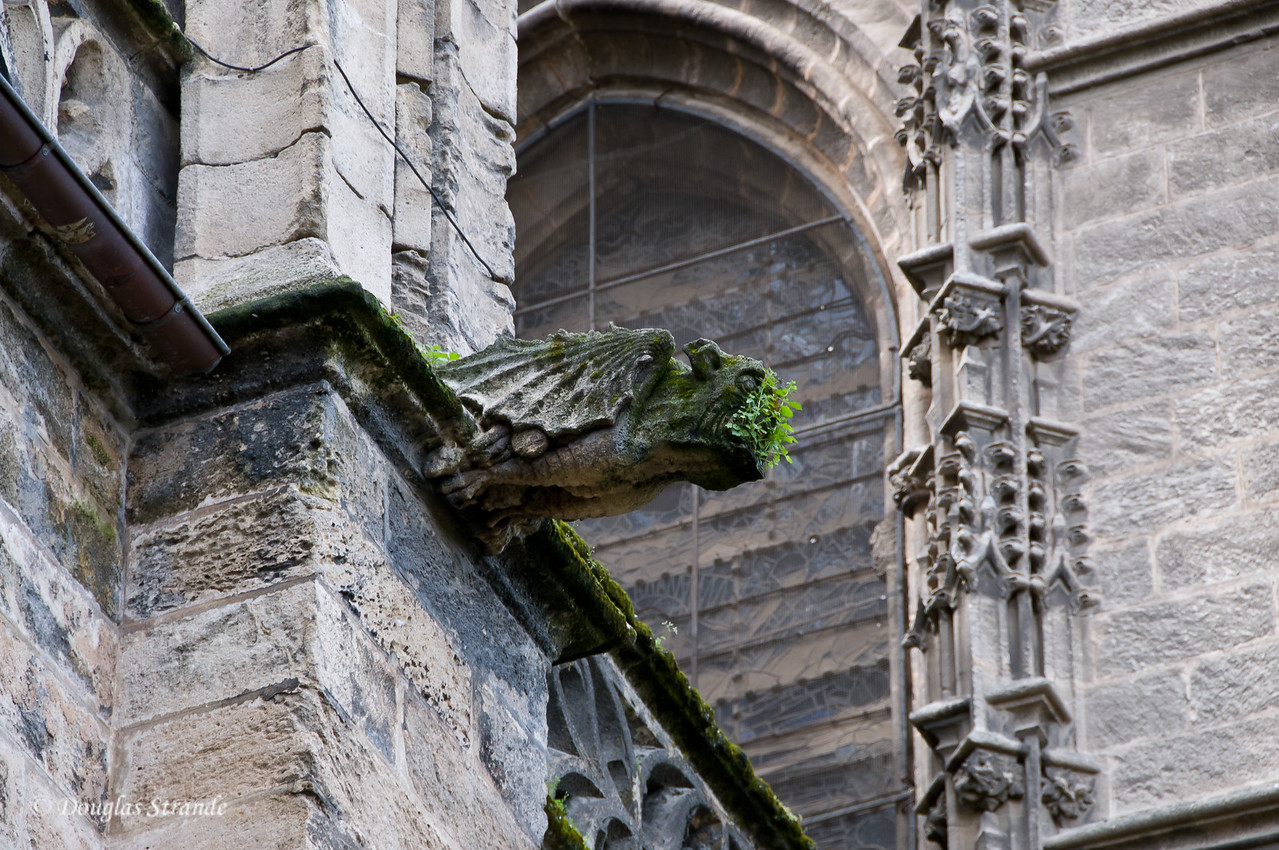 Tue 3/15 in Seville: Gargoyle sprouting weeds on the Cathedral of Seville