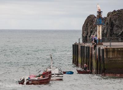 Island of Madeira - Camara de Lobos fishermen