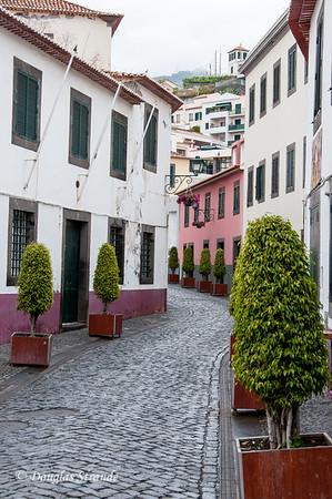 Island of Madeira - Camara de Lobos
