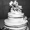 wedding (281)bw