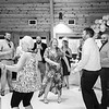 wedding (444)bw