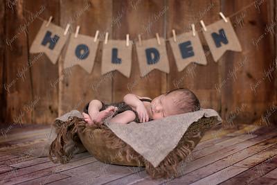 HoldenM-3654-Edit