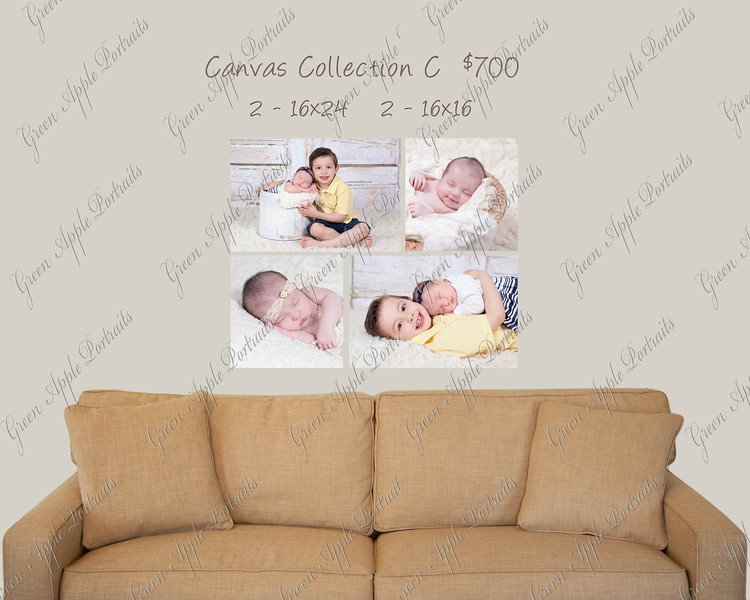 Canvas Wall Grouping C_