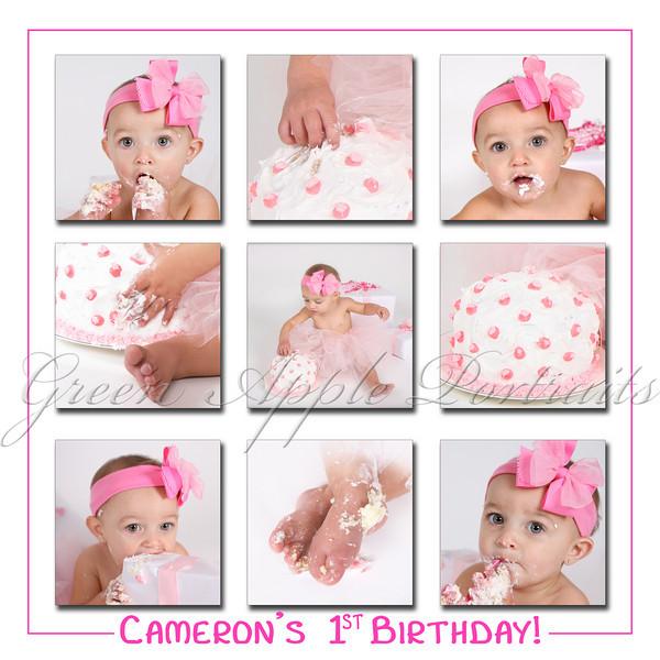 Cameron's 1st Birthday 9 photo collage