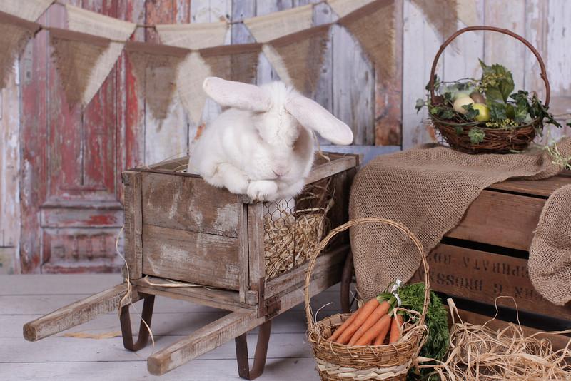 EasterMinis2014-2230