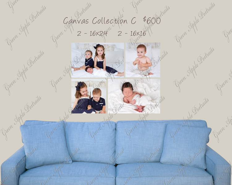 We offer various canvas collections are very reasonable prices to check out our pricing page to learn more!