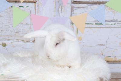 EasterMinisDay2-7205