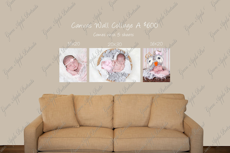 Sophia canvas wall collection