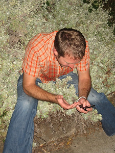 there's nothing like texting while sitting in a bush to make your birthday complete