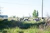 Farm_0604